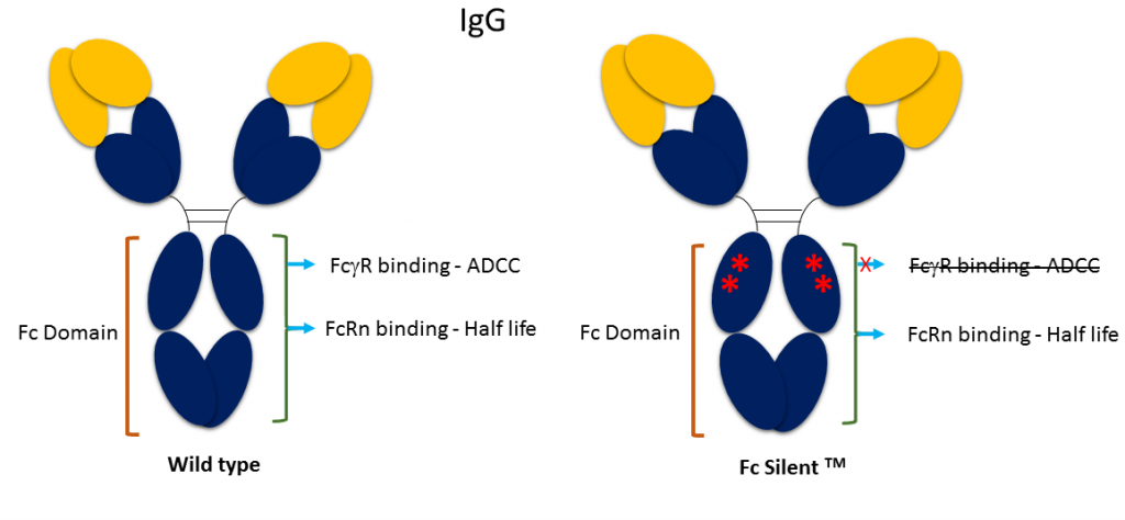 Fc-Silent-ppt4-1-1024x474