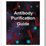 AB_purification_guide-150x150