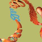 Epigenetics-Research