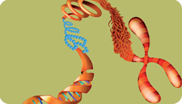 Epigenetics-Research