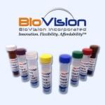 vials-2_1_3
