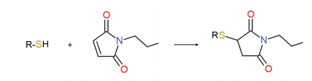 Thiol_and_Maleimide_Reaction-1024x268