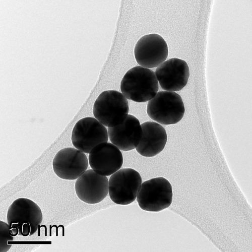 Data-colloidal-gold-40nm-particles-e1502726646625