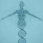CRISPR-Genome-Wide-KO-Cell-Line